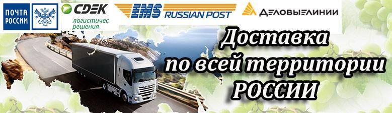 Продажа самогонных аппаратов (дистилляторов) с доставкой по России